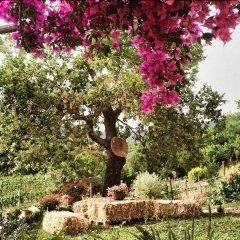Отель Agriturismo I Moresani Казаль-Велино фото 13