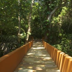 Отель Las Brisas Ixtapa фото 4