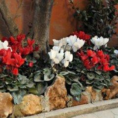 Отель Via Veneto Suites Италия, Рим - отзывы, цены и фото номеров - забронировать отель Via Veneto Suites онлайн интерьер отеля фото 3