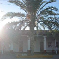 Las Palmas Hotel фото 11