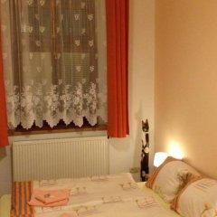 Отель Penzion u Vlčků Чехия, Хеб - отзывы, цены и фото номеров - забронировать отель Penzion u Vlčků онлайн фото 5