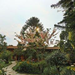 Отель Summit Hotel Непал, Лалитпур - отзывы, цены и фото номеров - забронировать отель Summit Hotel онлайн фото 12