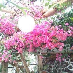 Отель Izukogen Onsen J Garden Ито фото 7