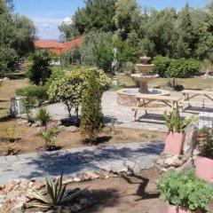 Отель Villa Gesthimani Греция, Ситония - отзывы, цены и фото номеров - забронировать отель Villa Gesthimani онлайн фото 10