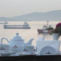 Emexotel Турция, Стамбул - 1 отзыв об отеле, цены и фото номеров - забронировать отель Emexotel онлайн бассейн