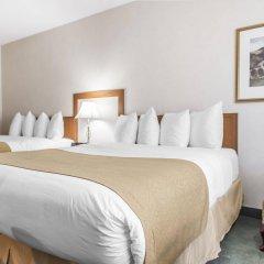 Отель Quality Inn & Suites & Conference Centre Канада, Гатино - отзывы, цены и фото номеров - забронировать отель Quality Inn & Suites & Conference Centre онлайн комната для гостей фото 2