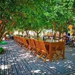 Hayitbuku Ahsapevleri Турция, Датча - отзывы, цены и фото номеров - забронировать отель Hayitbuku Ahsapevleri онлайн фото 2