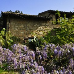 Отель La Casa sulla Collina d'Oro Пьяцца-Армерина фото 5