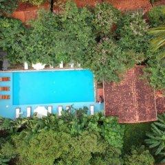 Отель Bauhinia Resort фото 11