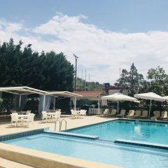 Отель Skampa Албания, Голем - отзывы, цены и фото номеров - забронировать отель Skampa онлайн бассейн