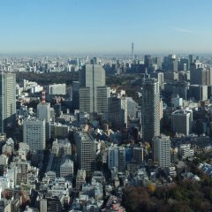 Отель The Ritz Carlton Tokyo Токио фото 7