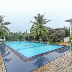 Отель Water Nest Шри-Ланка, Калутара - отзывы, цены и фото номеров - забронировать отель Water Nest онлайн бассейн