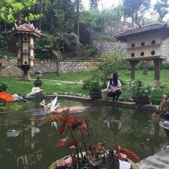 Отель Sapa Garden Bed and Breakfast Вьетнам, Шапа - отзывы, цены и фото номеров - забронировать отель Sapa Garden Bed and Breakfast онлайн приотельная территория фото 2