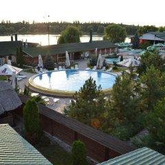 Gnezdo Gluharya Hotel гостиничный бар