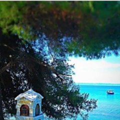 Отель Frontbeach Maisonette Ситония пляж