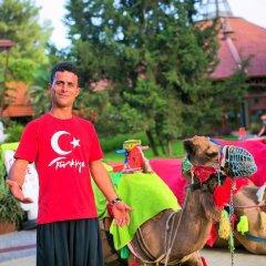 Marti Myra Турция, Кемер - 7 отзывов об отеле, цены и фото номеров - забронировать отель Marti Myra онлайн фото 8