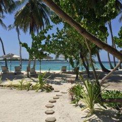 Отель Samura Maldives Guest House Thulusdhoo Мальдивы, Северный атолл Мале - отзывы, цены и фото номеров - забронировать отель Samura Maldives Guest House Thulusdhoo онлайн фото 4