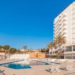 Отель Globales Mimosa Испания, Пальманова - отзывы, цены и фото номеров - забронировать отель Globales Mimosa онлайн фото 5