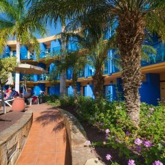 Отель Jandia Luz Морро Жабле гостиничный бар