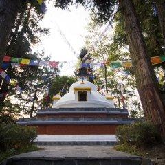 Отель Club Himalaya Непал, Нагаркот - отзывы, цены и фото номеров - забронировать отель Club Himalaya онлайн помещение для мероприятий