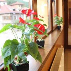 Отель Family Hotel Enica Болгария, Тетевен - отзывы, цены и фото номеров - забронировать отель Family Hotel Enica онлайн балкон