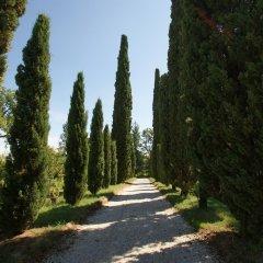 Отель Villa Ghislanzoni Италия, Виченца - отзывы, цены и фото номеров - забронировать отель Villa Ghislanzoni онлайн фото 28