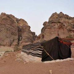 Отель The Rock Camp Иордания, Петра - отзывы, цены и фото номеров - забронировать отель The Rock Camp онлайн приотельная территория