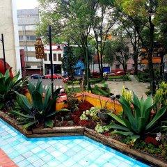 Отель La Querencia DF Мексика, Мехико - отзывы, цены и фото номеров - забронировать отель La Querencia DF онлайн бассейн
