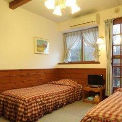 Отель Pension Holahoo Япония, Минамиогуни - отзывы, цены и фото номеров - забронировать отель Pension Holahoo онлайн комната для гостей фото 5