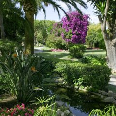 Отель Don Carlos Leisure Resort & Spa фото 12