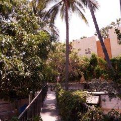 Отель Posada Señor Mañana Мексика, Сан-Хосе-дель-Кабо - отзывы, цены и фото номеров - забронировать отель Posada Señor Mañana онлайн фото 9