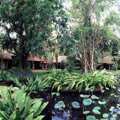 Отель Sigiriya Village фото 8