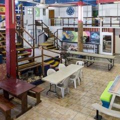 Отель Hostel Playa by The Spot Мексика, Плая-дель-Кармен - отзывы, цены и фото номеров - забронировать отель Hostel Playa by The Spot онлайн бассейн фото 2