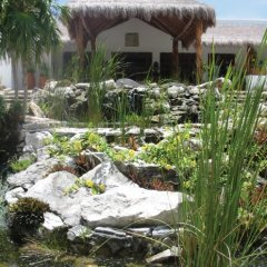 Отель Desire Riviera Maya Pearl Resort All Inclusive- Couples Only фото 10