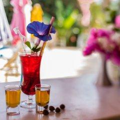 Pataros Hotel Турция, Патара - отзывы, цены и фото номеров - забронировать отель Pataros Hotel онлайн гостиничный бар