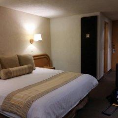 Отель Royal Pedregal Мехико комната для гостей