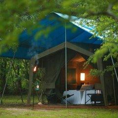 Отель Big Game Camp Yala Шри-Ланка, Катарагама - отзывы, цены и фото номеров - забронировать отель Big Game Camp Yala онлайн фото 2