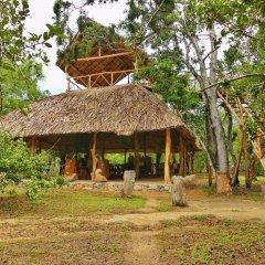 Отель Yala Safari Camping Шри-Ланка, Катарагама - отзывы, цены и фото номеров - забронировать отель Yala Safari Camping онлайн фото 4