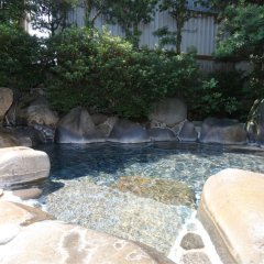 Отель Kikuchi Onsen Sasanoya Япония, Минамиогуни - отзывы, цены и фото номеров - забронировать отель Kikuchi Onsen Sasanoya онлайн фото 5