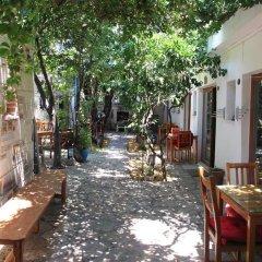 Iyon Pansiyon Турция, Фоча - отзывы, цены и фото номеров - забронировать отель Iyon Pansiyon онлайн фото 6