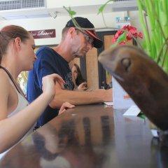 Отель Lotus Paradise Resort Таиланд, Остров Тау - отзывы, цены и фото номеров - забронировать отель Lotus Paradise Resort онлайн фото 4