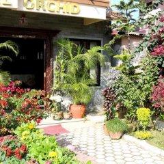 Отель Orchid Непал, Покхара - отзывы, цены и фото номеров - забронировать отель Orchid онлайн фото 2