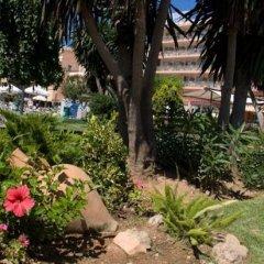 Helios Mallorca Hotel & Apartments фото 14
