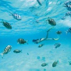 Отель Sofitel Bora Bora Marara Beach Resort Бора-Бора спортивное сооружение