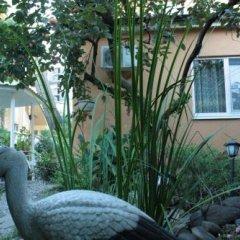 Гостевой Дом Инна - Санна фото 14