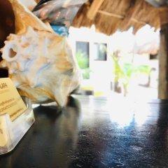 Отель Beachfront Hotel La Palapa - Adults Only Мексика, Остров Ольбокс - отзывы, цены и фото номеров - забронировать отель Beachfront Hotel La Palapa - Adults Only онлайн