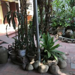 Отель Halo Bay Homestay
