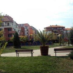 Отель Apollon Apartments Болгария, Несебр - отзывы, цены и фото номеров - забронировать отель Apollon Apartments онлайн фото 5