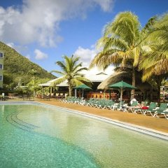 Отель Coco Palm бассейн фото 3