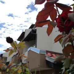 Хостел Siana Haus Равда помещение для мероприятий